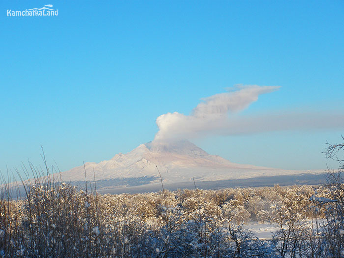 Tours to Kamchatka in February